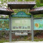 National Key Deer Refuge, Blue Hole, Big Pine Key
