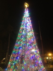 Christmas Lights in Key West