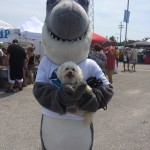 Indiana Bones posing with a shark at a festival benefitting Mote Marine.