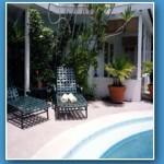 Alexander-palms-pool