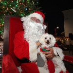 Santa and Indiana Bones at Pet Pictures with Santa at the Bight.
