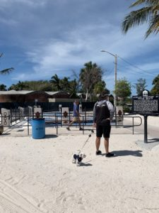 Higgs Beach, African Cemetery, Key West, Florida, Capt. Steven Lamp, Indiana Bones Maltese Dog